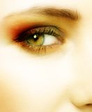 Olho verde de uma mulher imagens de stock