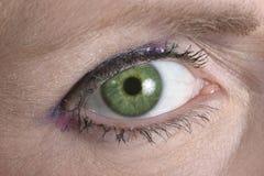 Olho verde que olha o Fotos de Stock Royalty Free