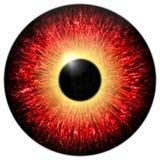 Olho vermelho Fotos de Stock Royalty Free