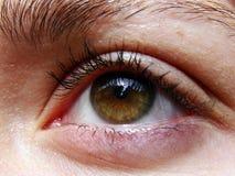 Olhos   Fotos de Stock Royalty Free