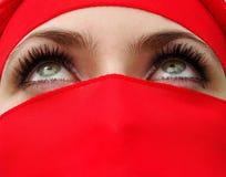 olhos Foto de Stock