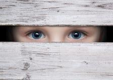 Olhos 3 Fotos de Stock