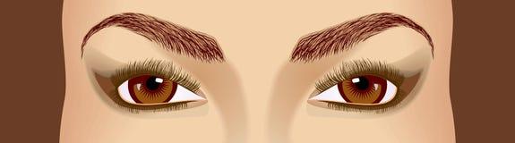 Olhos Imagem de Stock Royalty Free