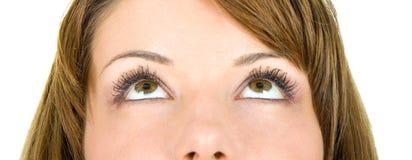 Olhos agradáveis que olham acima Fotos de Stock Royalty Free