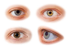 Olhos ajustados Fotografia de Stock Royalty Free
