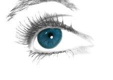Olhos azuis Imagem de Stock Royalty Free