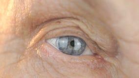 Olhos azuis da mulher de meia idade Fim acima filme