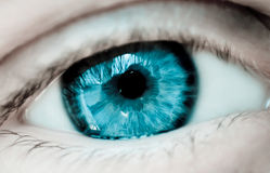Olhos azuis fêmeas com reflexão Imagem de Stock