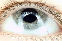 Olhos azuis no macro Fotos de Stock