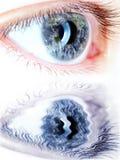 Olhos azuis no macro com mapa da terra Imagem de Stock Royalty Free