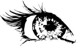 Olhos azuis novos bonitos do olho da mulher? Imagens de Stock Royalty Free