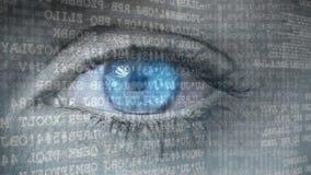 Olhos azuis que abrem aos códigos binários ilustração do vetor