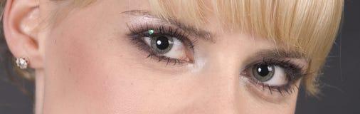 Olhos bonitos imagem de stock