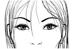Olhos bonitos da mulher ilustração do vetor