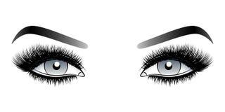 Olhos cinzentos da mulher com chicotes falsos longos com sobrancelhas fotografia de stock