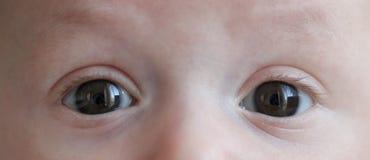 Olhos da criança Imagem de Stock Royalty Free