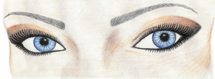 Olhos da mulher ilustração do vetor