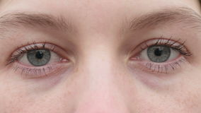 Olhos da rapariga video estoque