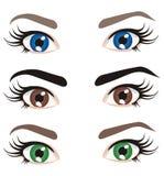Olhos de cores diferentes ilustração do vetor