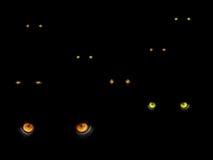 Olhos de gatos na obscuridade Imagens de Stock Royalty Free
