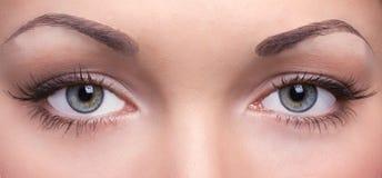 Olhos de uma jovem mulher Fotografia de Stock