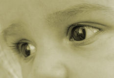 Olhos do bebê foto de stock royalty free