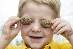 Olhos do cogumelo do Morel Imagens de Stock