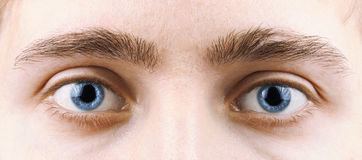 Olhos do homem Fotos de Stock