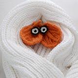 Olhos do inverno, fundo simples da folha feita malha Imagens de Stock Royalty Free