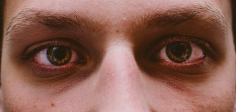 Olhos do menino imagem de stock
