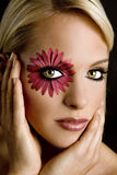 Olhos dramáticos Fotos de Stock