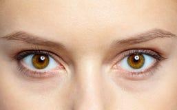Olhos humanos Imagens de Stock