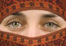 Olhos lindos Imagem de Stock