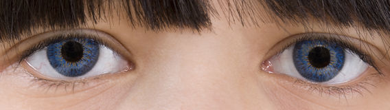 olhos Safira-azuis Foto de Stock