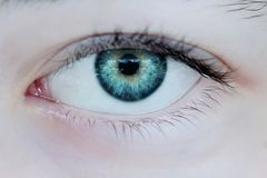 Olhos verdes foto de stock