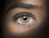 Olhos verdes Imagem de Stock Royalty Free