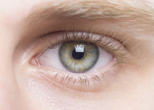 Olhos verdes Fotos de Stock