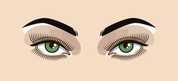 Olhos verdes, ilustração do vetor, mulher, tons instantâneos Imagem de Stock
