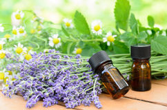 Oli essenziali con lavanda e le erbe Fotografia Stock