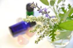 Oli essenziali con le erbe Immagini Stock