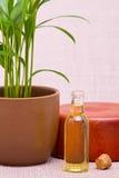Oli essenziali per il massaggio Fotografia Stock Libera da Diritti