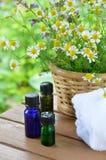 Oli essenziali per l'aromaterapia Fotografia Stock Libera da Diritti