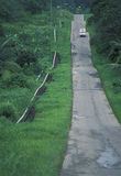 Oli-Rohre entlang Straße, Trinidad Stockfotografie