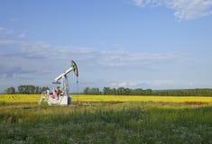 Olie Stock Afbeelding