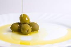 Olie en olijf Royalty-vrije Stock Foto
