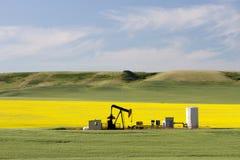 Olieaardolie Pumpjack Alberta royalty-vrije stock fotografie