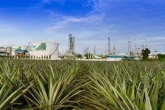 Olieraffinaderij Stock Afbeelding