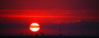 Olieveld dat op rode zonsondergang wordt geprofileerd Stock Foto's