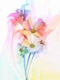 Olieverfschilderijstilleven van witte kleurenbloemen met zachte roze en purper Royalty-vrije Stock Foto's
