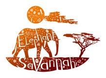 Olifant Royalty-vrije Illustratie